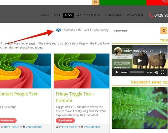 page-view-counter-plugin-poner-contador-de-visitas-en-WordPress